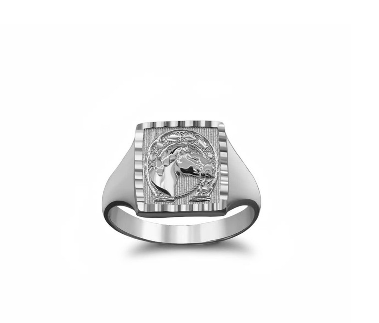 Sparkle-Cut Square Lucky Horseshoe Signet Ring in Sterling Silver