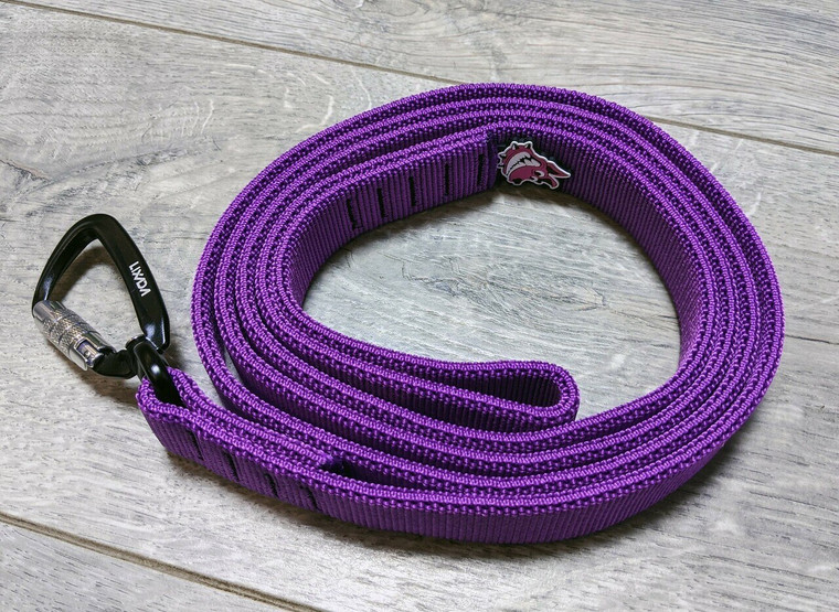 Bulla bungee lead (pre-order new colours)
