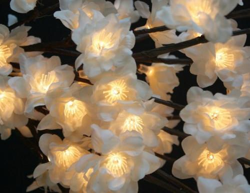 White Plum Flower Nouveau - Large