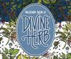 Hacienda Divine Herb, 4 pack 16oz cans