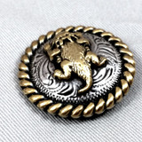 Horned Lizard Horned Toad Conchos