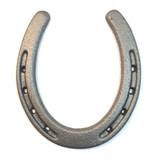 Large Cast Iron Horse Shoe