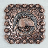 Square Berry Texas Armadillo Belt Buckle