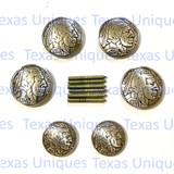 Indian Head Nickel Concho Saddle Set