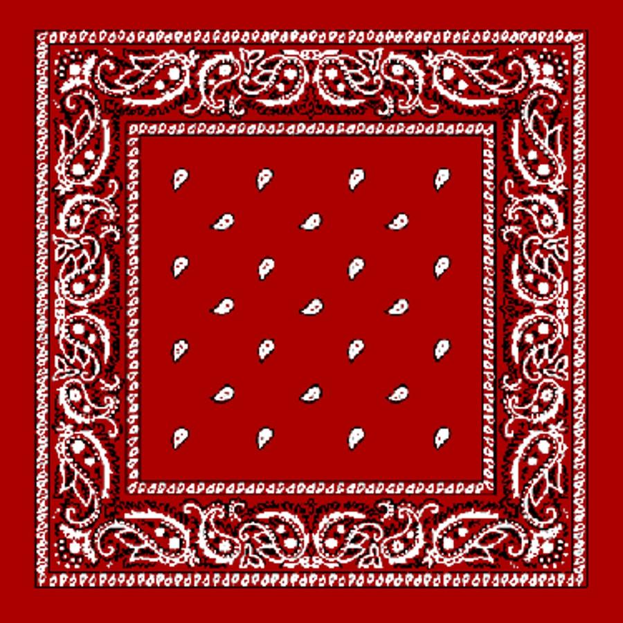 Red Paisley Bandana Western Decor