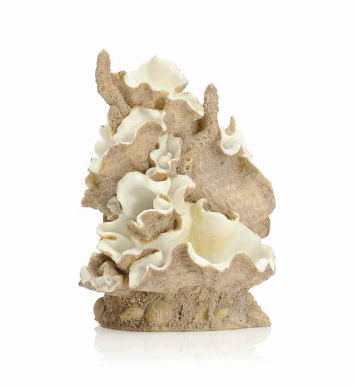 biOrb Clamshell Ornament Medium