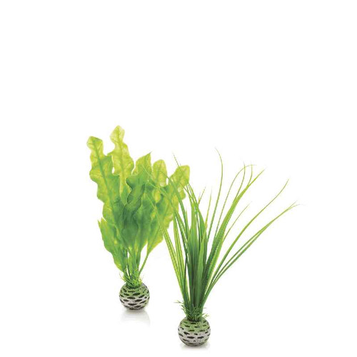 biOrb Easy Plant Set Green - Small
