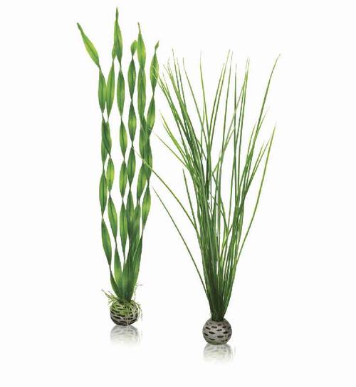 biOrb Easy Plant Set Green - Large