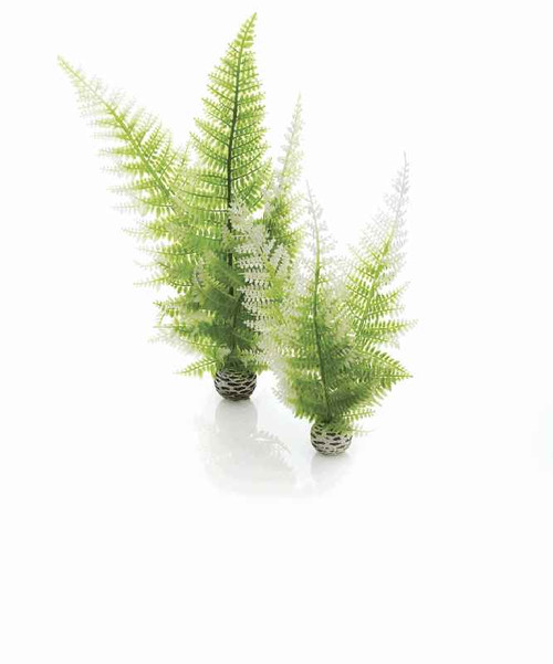 biOrb Aquatic Winter Fern Set 2