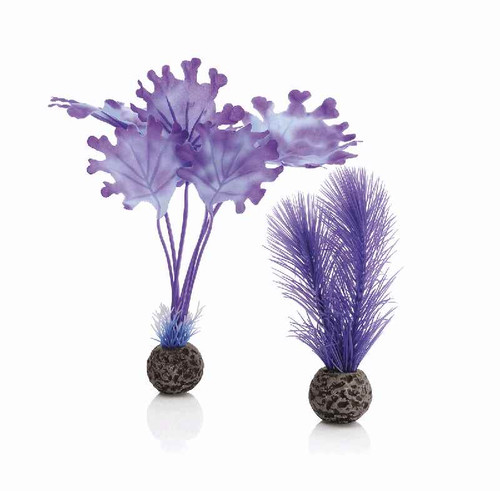 biOrb Kelp Set S Purple
