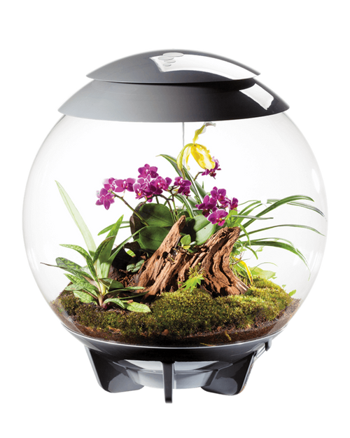 BiOrb Air 60L Terrarium