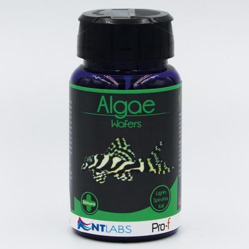 nt labs algae wafers 110g