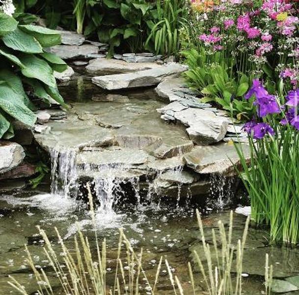 The mindful gardener
