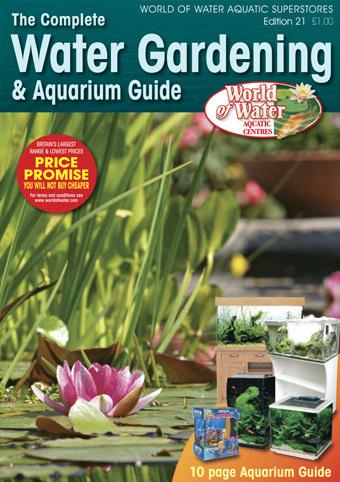 brochure2020.jpg