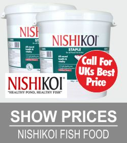 nishikoi-deals.jpg