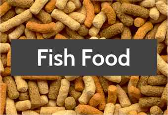 pond-fish-food-1.jpg