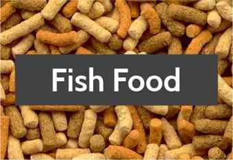 pond-fish-food-1.jpg