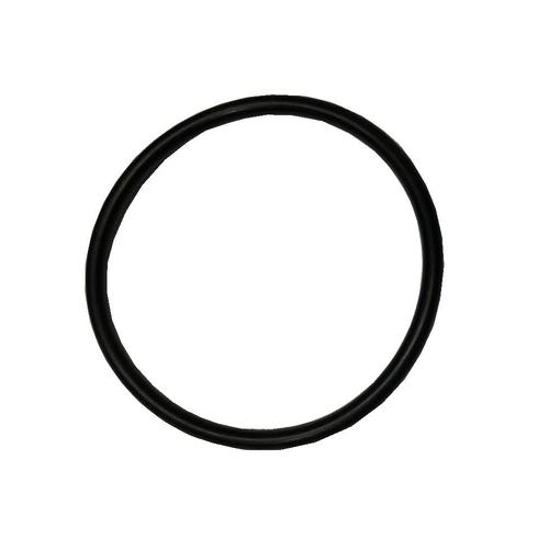 Pulsar / 2095 Element O'Ring
