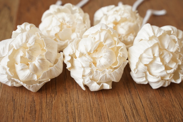 Peony flowers with cotton wick, handcrafted from sola wood
