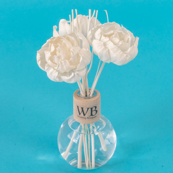 Candy Cane Diffuser and Flower Set