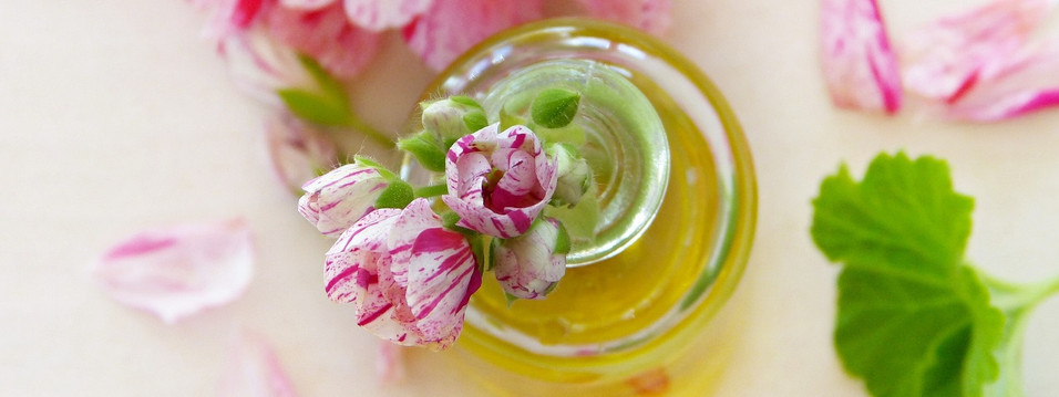 What is Jojoba and why is it great for skin care?