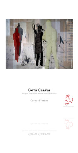 "Hahnemuhle Goya Canvas 340gsm 24""x39' Roll"
