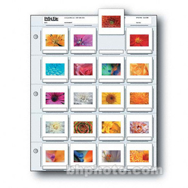 Print File 2×2-20B 35mm Slide Pages (25 pg)