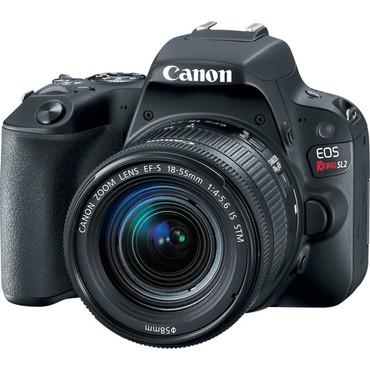 Canon EOS SL2 DSLR Camera with 18-55mm Lens (Black)
