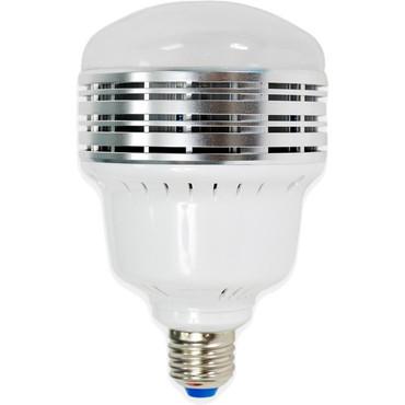 Savage LED Bi-Color Bulb (50W)