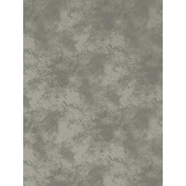 Promaster Cloud Dyed Backdrop 10'x12' - Light Grey (ACE63500)