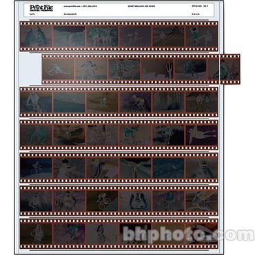 Print File 35-7 35mm Negative Preserver 7x6 (100 pg)
