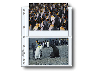 Print File 57-4P 5x7 Print Preservers (25 Pg) CLEAR