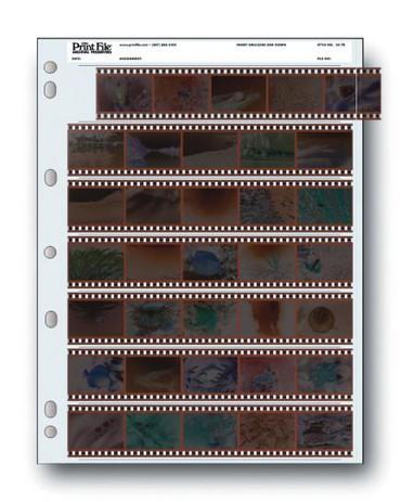 Print File 35-7B 35mm Negative Preserver 7x5 (100 pg)
