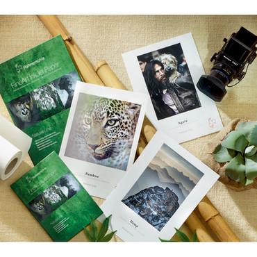 "Hahnemühle Natural Line Sample Pack (13 x 19"")"