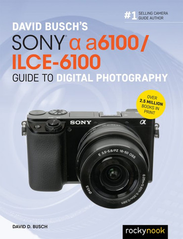 DAVID BUSCHS SONY ALPHA A6100/ILCE-6100 GUIDE TO DIGITAL PHOTOGRAPHY
