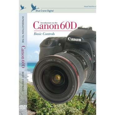 Introduction To The Canon 60D DVD