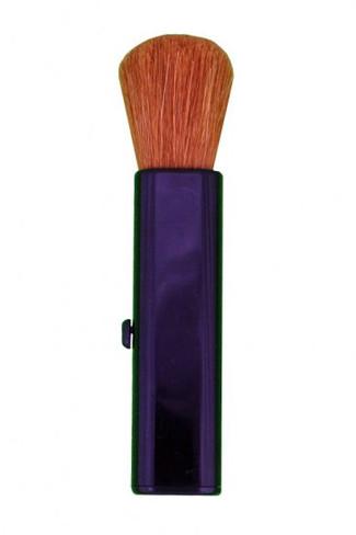 Retractable Brush