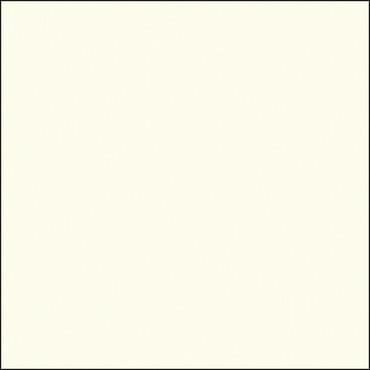 "Savage Widetone Seamless Background Paper (53"" x 12yd, #50 White)"