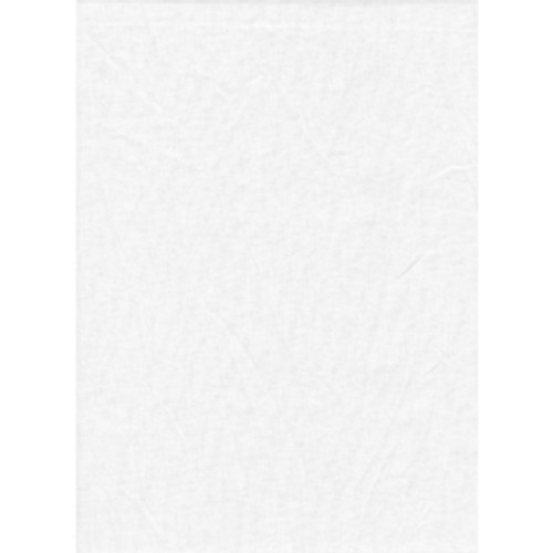 Promasre Solid Backdrop 10'x20' - White