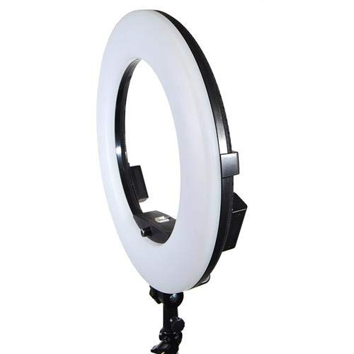 "Savage RGB Rainbow 19"" Ringlight"