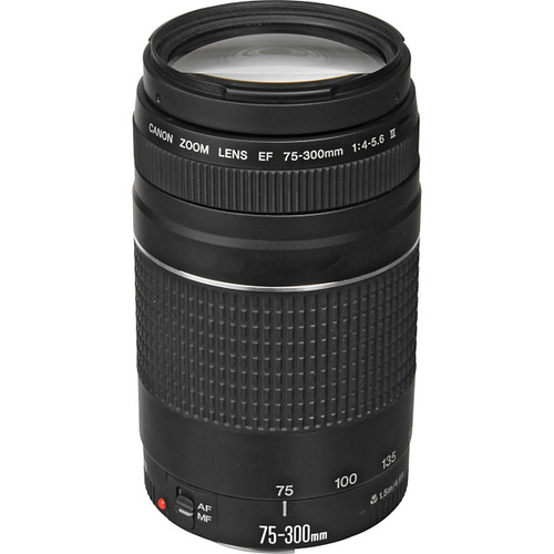 Canon EF 75-300mm F/4-5.6 III (ACE13153)