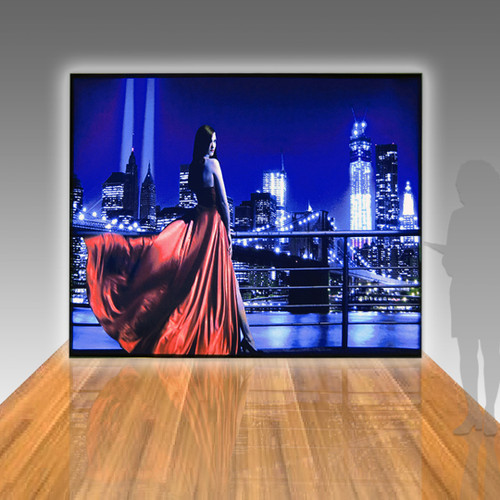 Panoramic Lightboxes 10ft x 8ft