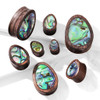 Tear Drop Abalone Inlaid Organic Sono Wood Saddle Plugs