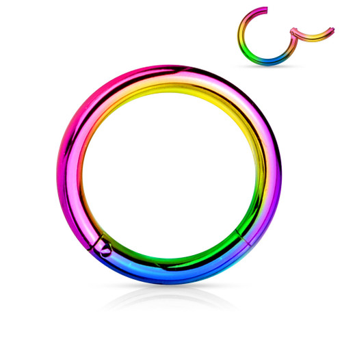 Rainbow Titanium Anodized High Quality Precision 316L Surgical Steel Hinged Segment Ring