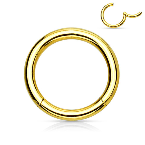 Copy of Gold Titanium Anodized High Quality Precision 316L Surgical Steel Hinged Segment Ring
