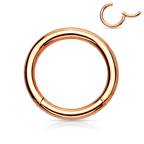 Rose gold Titanium Anodized High Quality Precision 316L Surgical Steel Hinged Segment Ring