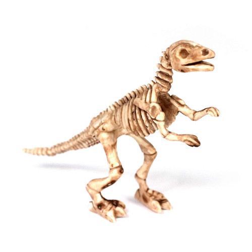 Dinosaur Skeleton Small Counting and Matching Set (408 Pieces)