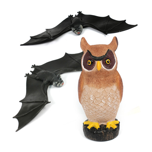 3PC Nocturnal Owl And Bat Set