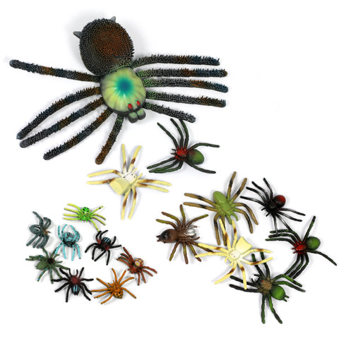 EYFS Assorted Spider Bug Pack
