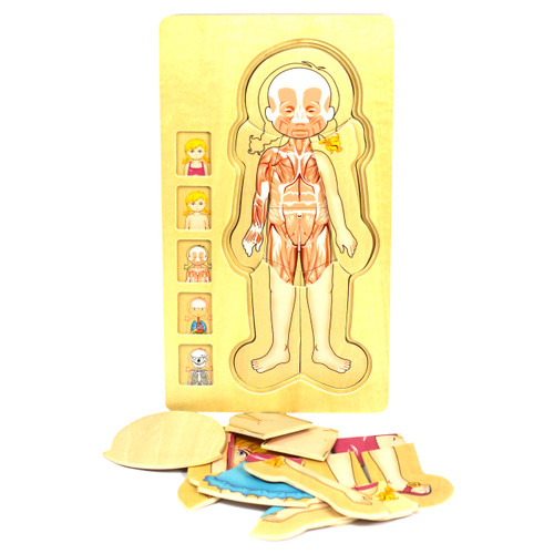 Wooden Human Body Girl Puzzle